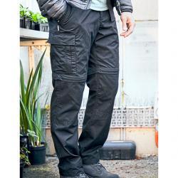 Expert Kiwi Tailored...